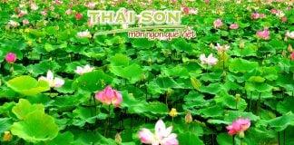 Nha Đam Mủ Trôm Thái Sơn_Hương Sen Đồng Tháp_01