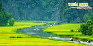 Sua-Bap-Thai-Son-Rong-Choi-Tren-Dat-Bac-01