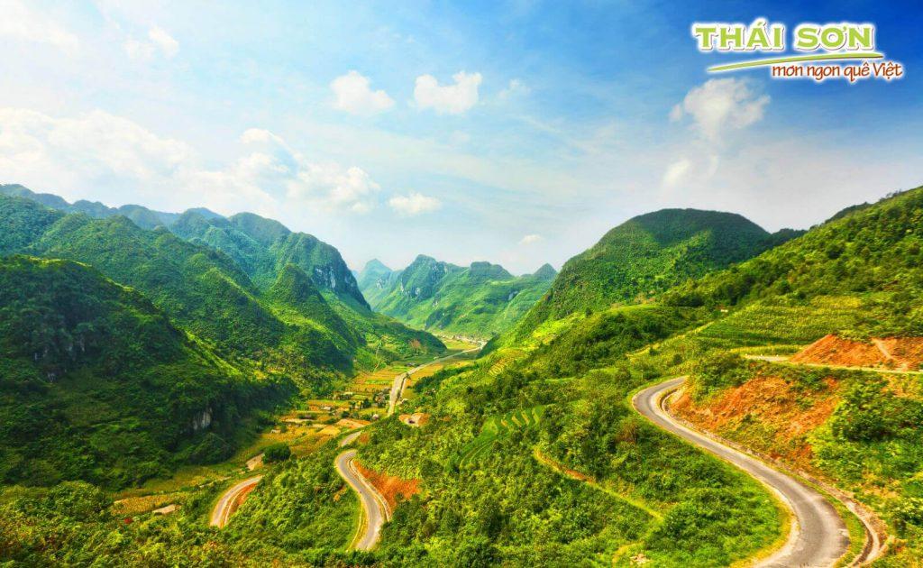 Nha-Đam-Thái-Sơn-Nào-Cùng-Lên-Đường_03